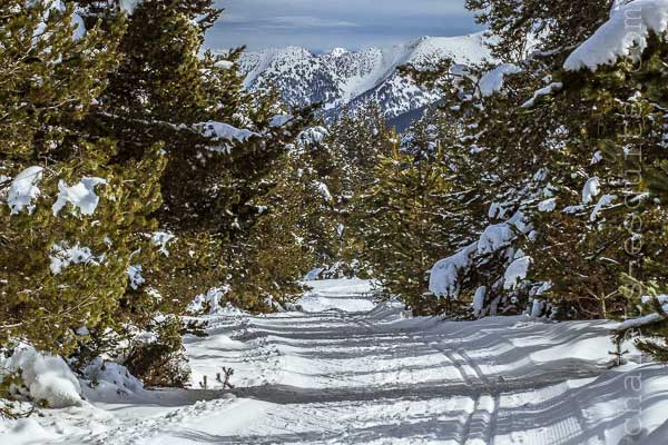 ski nordique Font Romeu